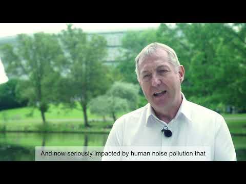 Play video: Surrey Showcase 2021 | Professor Tony Myatt | University of Surrey