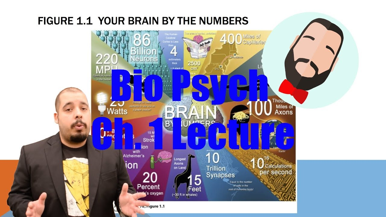 biological psychology chapter 1 Study flashcards on biological psychology by james w kalat: chapter 1 at cramcom quickly memorize the terms, phrases and much more cramcom makes it easy to get.