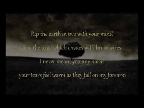 Mumford & Sons - I gave you all (lyrics)
