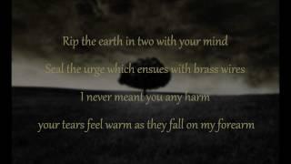 Mumford Sons I Gave You All Lyrics