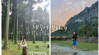 부모님 모시고 제주도 여행|성산일출봉|애월|절물자연휴양…