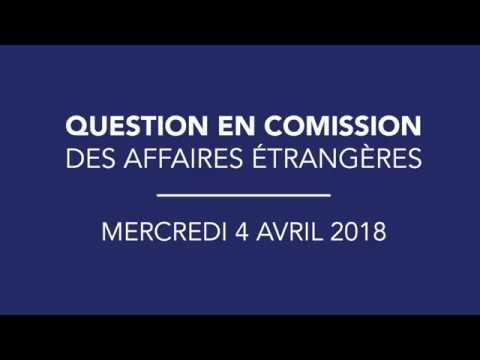 Commission des affaires étrangères - 04/04/2017