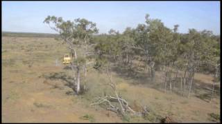This is what land clearing in Queensland looks like 2015