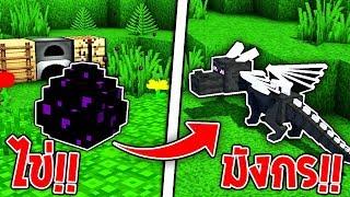 จะเป็นยังไง? ถ้าเราสามารถจับมังกรให้มาเป็นสัตว์เลี้ยงได้!! 🥚🐉 (Dragon Mounts Mod)