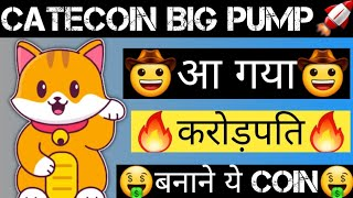 CateCoin Biggest Profit Soon | Catecoin Future | Cryptocurrency News Today