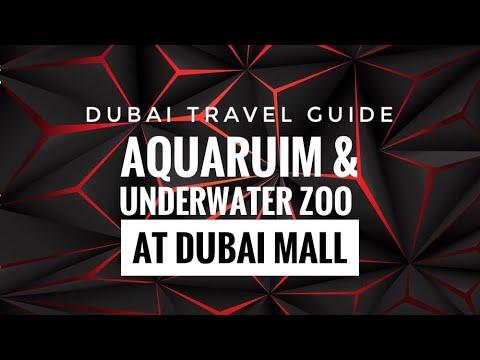 """4k E&E DUBAI AQUARIUM & UNDERWATER ZOO AT DUBAI MALL """"the biggest aquarium in the World"""""""