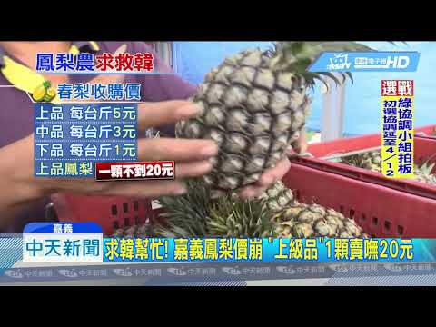20190324中天新聞 嘉義鳳梨價慘跌 農民哀嚎:拜託韓國瑜幫幫忙