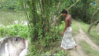 TOP ONE Traditional Fishing in Bangladesh | Traditional Fishing Skill