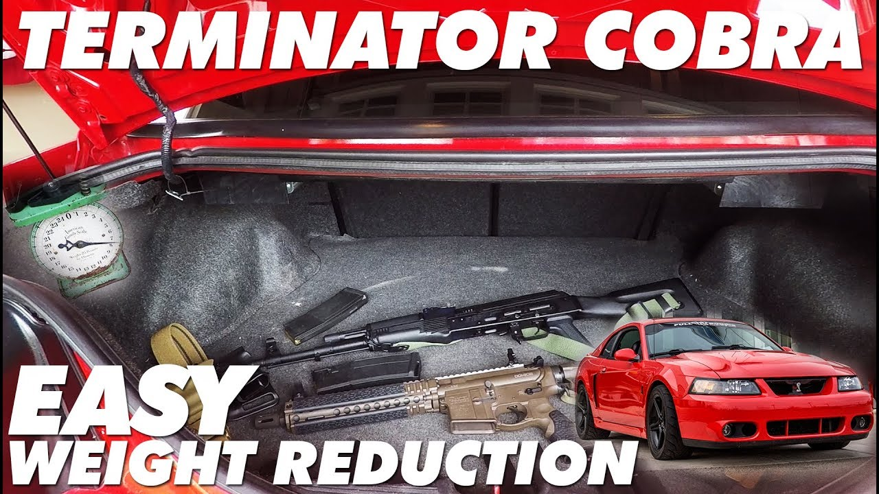 Terminator Cobra 2 Step