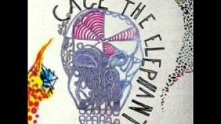 Cage The Elephant - Ain