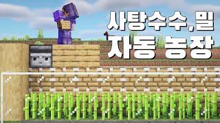 사탕수수와 밀 자동 농장 [마인크래프트 야생 시즌2]