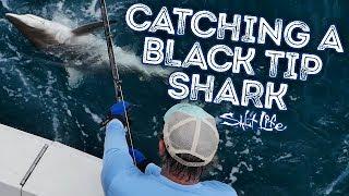Catching a Black Tip Shark | Salt Life