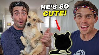 WE GOT A NEW PET? (Roommate Could Not Believe It!)