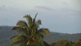 видео Туры на Андаманские острова
