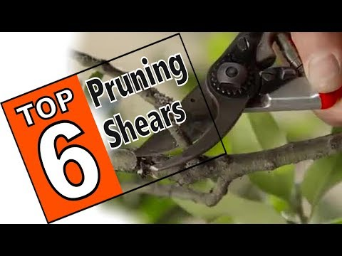 🌻 Best Pruning Shears For Your Next Gardening Project