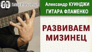 Испанская гитара фламенко. Урок 21. Не Дидюля