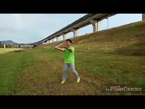 白鶴拳三式教學 - YouTube