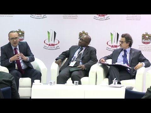 Parallel session 3: FDI in Agriculture and technological advances, the case of Africa