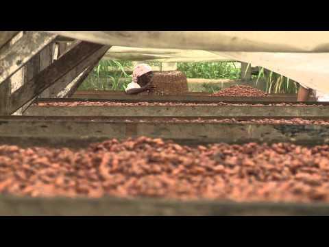 Chocolate in SÃO TOMÉ ISLAND