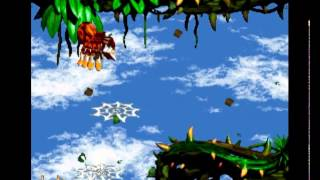 Donkey kong Country 2 Animal Antics-Brambles section WITH Squitter