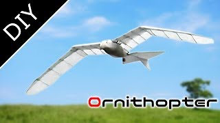 Amazing RC Ornithopter like a bird