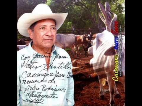 FG El Caserío - Pedro Rodríguez
