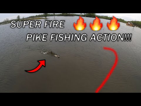 Crazy Action While Lake Fishing For AGGRESSIVE Northern Pike!!! (Illinois Fishing)