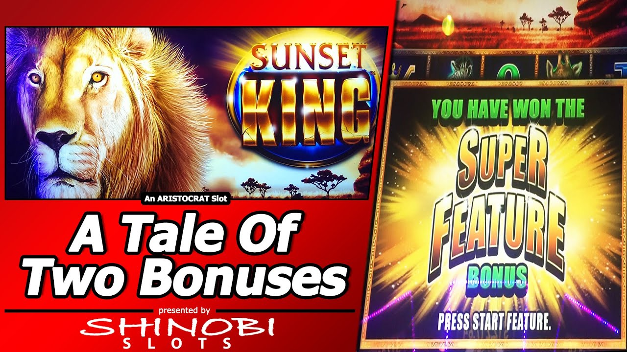 free slots with multiple bonus features