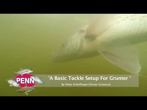 A Basic Tackle Setup For Grunter