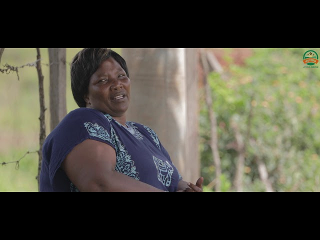 Beneficiary Story- Sophie- French Beans farmer