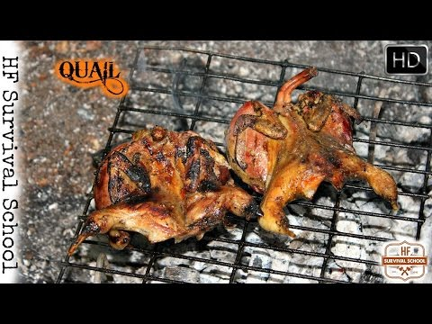 Bushcraft Cooking Quail - Field Dressing Game Bird - Processing / Meat on Grill / Food - HD Video