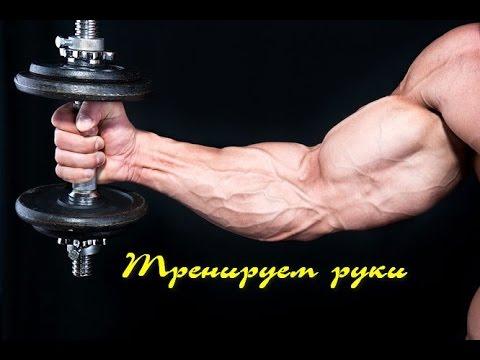 Вопрос: Как увеличить мышечную массу с помощью гантелей?