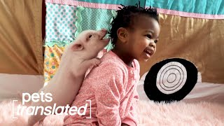 Babies & Animals | Pets Translated