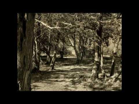 «Darkeí Chaím» - für Klavier und Querflöte ... von Martin Messmer ...  (Darkei Chaim) .....