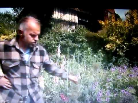 Great Dixter head gardener Fergus Garrett talking about the use and saving of water