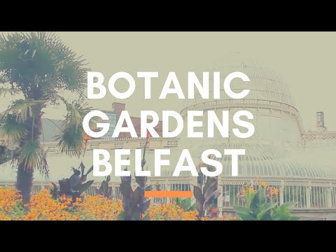 BOTANIC GARDENS BELFAST - A Beautiful Park Near Belfast City Centre, Northern Ireland - NI