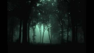 Dhaubgurz - Cold Flames of Melancholy