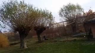 Gołębie Tadka:pierwsza buda w ruch