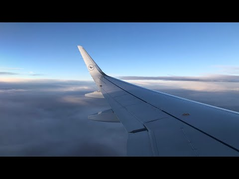 LUFTHANSA (economy) | FRANKFURT - AMSTERDAM | AIRBUS A320neo