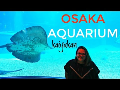 OSAKA Japan : Osaka Aquarium Kaiyukan | Osaka Aquarium TOP ATTRACTIONS