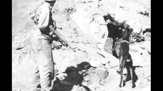 Perros soldado. El dóberman