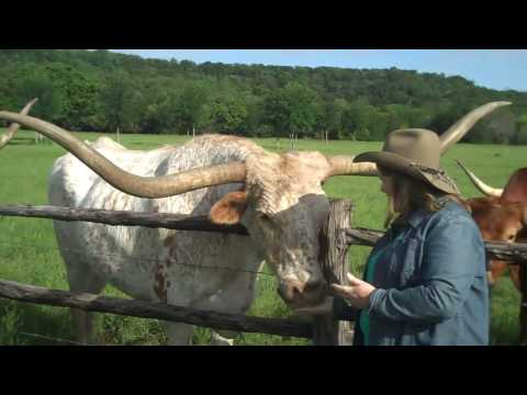 Things to See and Do in Graham, Texas