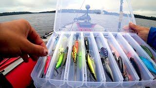 Много новых приманок принесут вам много рыбы особенно возле берега в траве