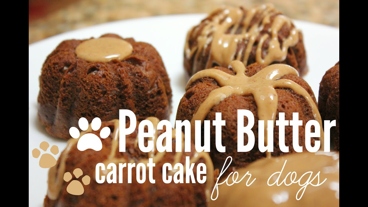 Safe cakes for dogs recipe