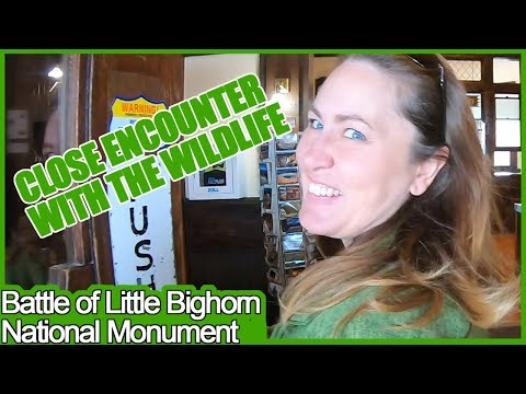 SE2:EP6 Full-Time RV Life Battle of Little Bighorn, Wild Animals and West Yellowstone