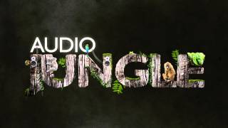 Sound - 10 Radio Imaging Sound Effect Pack | AudioJungle