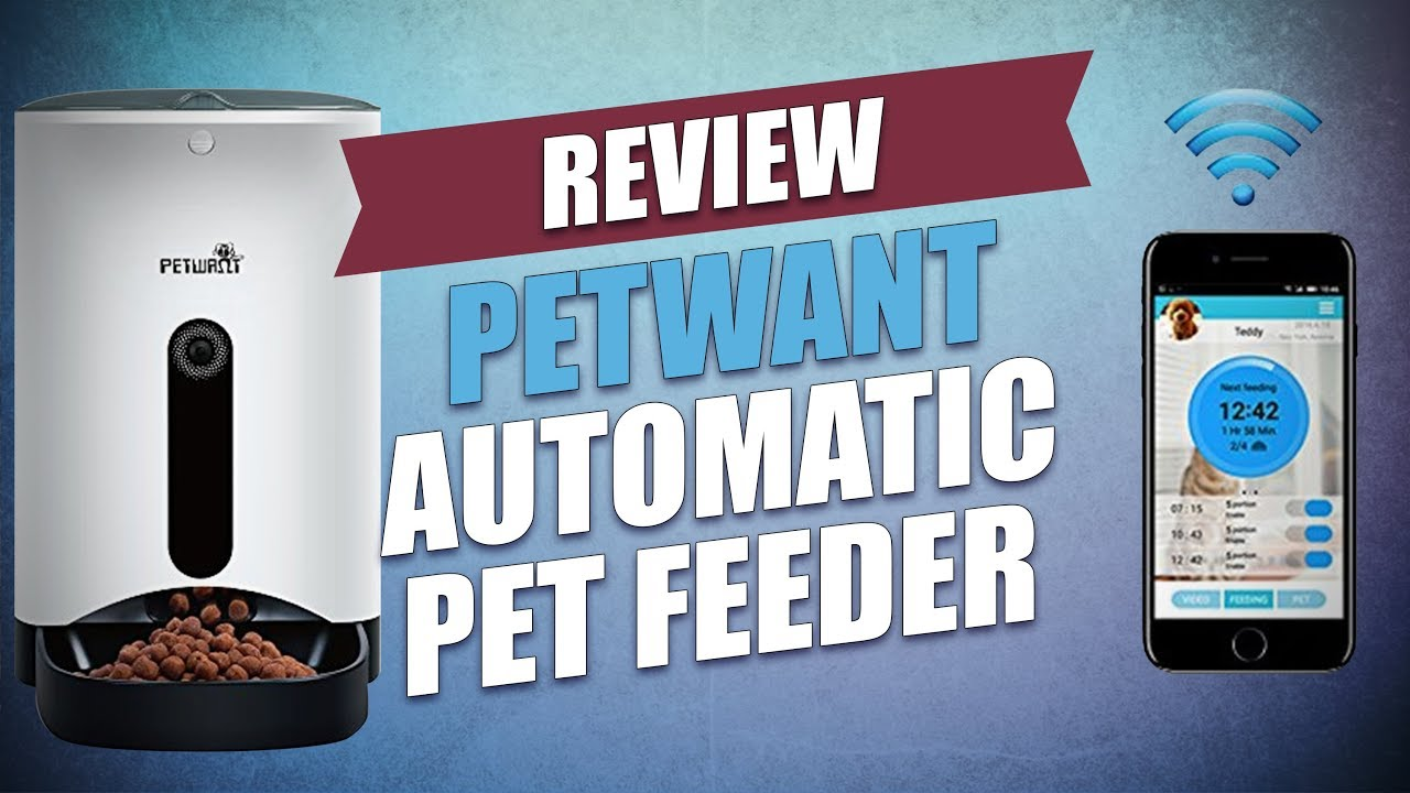 Petwant Automatic Pet Feeder Review