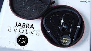 Обзор гарнитуры Jabra Evolve 75e в 4к