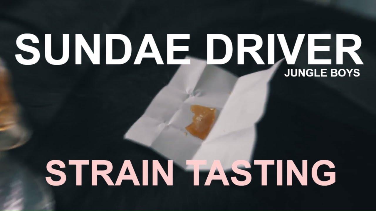 Sundae Driver Strain Tasting - Jungle Boys - Oil Refinery Sugar Trim - TLC  LA Cannabis Strain Review