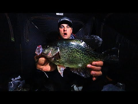 NIGHT Fishing For GIANT Black Crappie (Ice Fishing 2019)